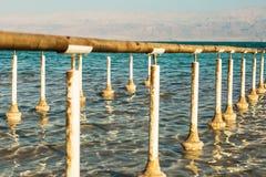 Costa hermosa del mar muerto fotos de archivo