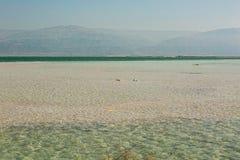 Costa hermosa del mar muerto fotografía de archivo libre de regalías