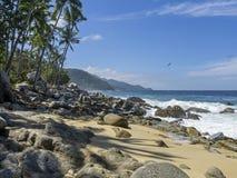 Costa incontaminata dell'oceano Pacifico immagine stock libera da diritti