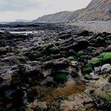 Costa Inglaterra de Burniston North Yorkshire Fotos de Stock Royalty Free