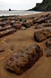 Costa Inglaterra de North Yorkshire da baía de Saltwick Fotografia de Stock