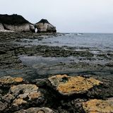 Costa Inglaterra de North Yorkshire da baía de Thornwick Fotografia de Stock Royalty Free