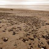 Costa Inglaterra de Yorkshire da praia de Barmstom Imagem de Stock Royalty Free