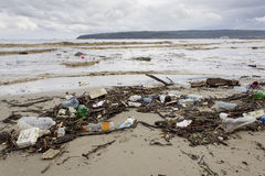 Costa inquinante Immagine Stock Libera da Diritti