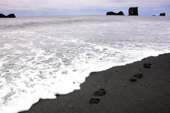Costa islandêsa Foto de Stock