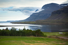 Costa islandêsa do fiorde Fotos de Stock