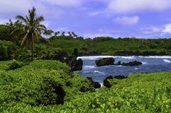 Costa leste de Maui Imagens de Stock Royalty Free