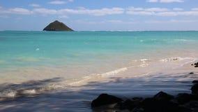 Costa leste de Oahu video estoque