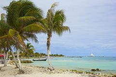 Costa Maya coast, Mexico, Caribbean Royalty Free Stock Photo