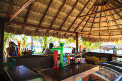 Costa Maya. MEXICO JAN 30 2016: cruise ship terminal & resorts is a perfect place for all visitors -young and old - since many attractions awaiting on this stock image