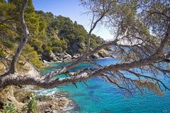 Costa mediterránea hermosa Foto de archivo libre de regalías