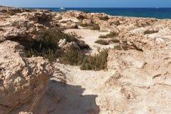 Costa Mediterranea pietrosa nelle vicinanze di Protaras, Cipro immagini stock