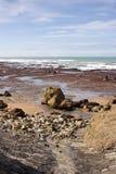 Costa meridional de la bahía de Hawkes Fotografía de archivo libre de regalías