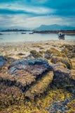Costa na maré baixa e navios encalhada em Escócia Fotos de Stock Royalty Free