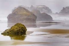 Costa nebbiosa dell'Oregon Immagine Stock Libera da Diritti