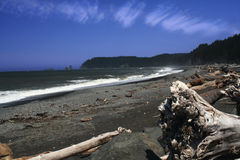 Costa noroeste pacífica Imagem de Stock Royalty Free