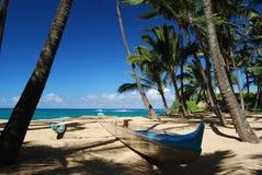 Costa norte Fotos de Stock Royalty Free