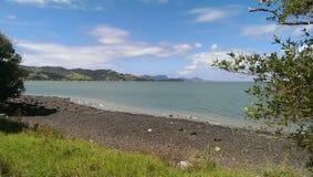 Costa Nuova Zelanda Immagini Stock