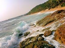 Costa oceânico com ondas e as palmeiras grandes Fotografia de Stock Royalty Free