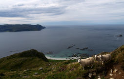 Costa oeste de Noruega Foto de archivo libre de regalías