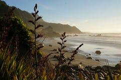 Costa oeste del ` s de Nueva Zelanda fotografía de archivo libre de regalías
