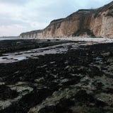 Costa orientale Inghilterra di Yorkshire dell'argine dei danesi fotografie stock libere da diritti