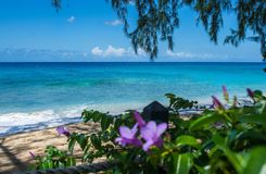 Costa ovest i Caraibi di settembre Fotografia Stock Libera da Diritti