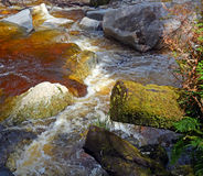 Costa ovest; la Nuova Zelanda; karamea; calcare; arco; fiume; oparar Fotografia Stock