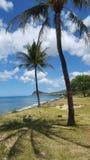 Costa Ovest Oahu Immagine Stock
