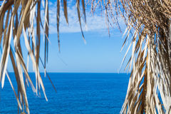 Costa Paradiso water and palm branches Stock Photo