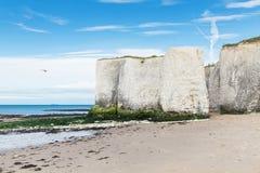 Costa popular do canal inglês de Mancha do La da baía da Botânica, Kent, Englan Fotos de Stock