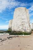 Costa popular do canal inglês de Mancha do La da baía da Botânica, Kent, Englan Fotografia de Stock