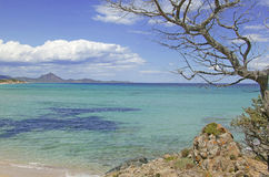 Costa Rei. Beach in sardinia Royalty Free Stock Photography