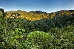Costa Rica Стоковая Фотография RF