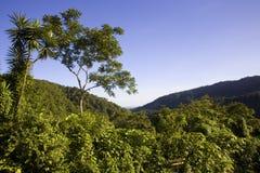 Costa Rica arkivbild