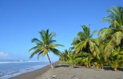 Costa Rica Beach stock foto's
