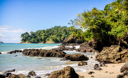 Costa Rica Beach. On the Caribbean with blue water and green trees Stock Image