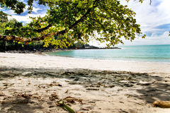 Costa Rica Beach Front. Beautiful Costa Rica Beach Cove at Manuel Antonio National Park, Quepos Tropical Rain Forest Stock Photos