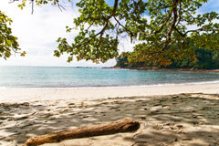 Costa Rica Beach Front. Beautiful Costa Rica Beach Cove. Manuel Anotnio National Park, Quepos Tropical Rain Forest Royalty Free Stock Photography