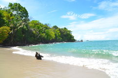 Tropical Costa Rica beach with clear water. Sandy white beach at Manuel Antonio Park in Costa Rica, with clear blue water. This pristine beach is next to a Stock Photography