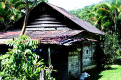 Costa Rica Jungle House Royalty Free Stock Photo