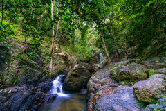 Costa Rica Nature Background Travel Destinations Rio CelesteCosta Rica Nature Background loppdestinationer Rio Celeste Arkivfoto