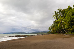 Costa Rica, Osa peninsula, Bahia Drake. Costa Rica, Osa peninsula, sand beach with palm trees at Bahia Drake on a cloudy day Stock Photo