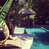 Costa Rica, Santa Teresa, Playa Hermosa, Pura Vida Fotografia Stock