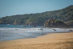 Costa Rica Surf Royaltyfri Foto