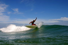 Costa Rica Surfer. A surfer riding a wave in Puerto Viejo, Costa Rica royalty free stock photo