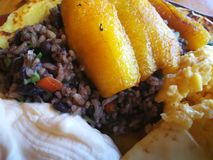 Gallo pinto. Rice and beans. Costa Rica  traditional food. Fantastic Breakfast gallo pinto rice beans. Tourism stock photography