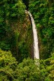 Costa Rica Waterfall royalty-vrije stock foto