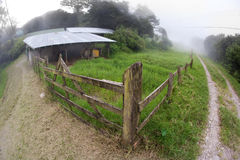 Costa Rican dairy farm Stock Photo
