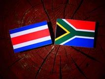 Costa Rican-de vlag met Zuidafrikaanse vlag op een boomstomp isoleert stock illustratie